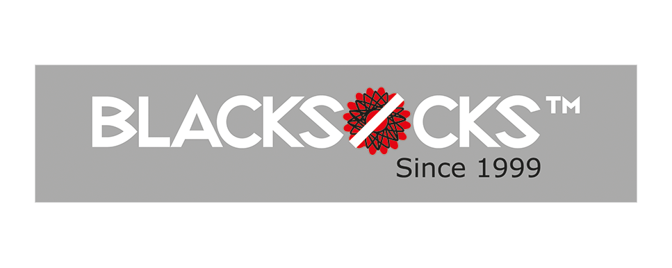 Viseca_Blacksocks-Logo